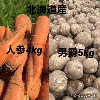 北海道産じゃがいも5kgにんじん4kg(野菜)