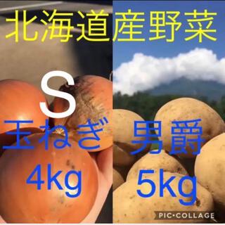 北海道産じゃがいも5kg玉ねぎ4kg(野菜)