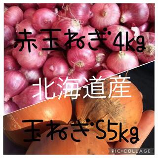 北海道産玉ねぎs5kg赤玉ねぎ4kg(野菜)
