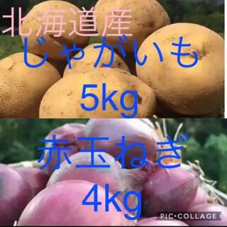 北海道産じゃがいも5kg赤玉ねぎ4kg(野菜)