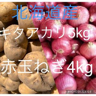 北海道産キタアカリ5kg赤玉ねぎ4kg(野菜)