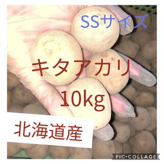 北海道産キタアカリss 10kg(野菜)