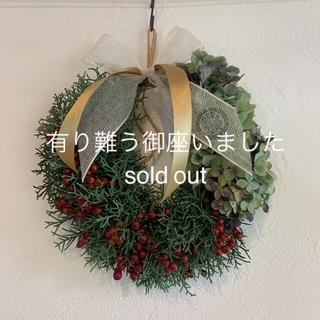 緑と赤のリース❆ ドライフラワー リース クリスマス(ドライフラワー)