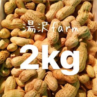 生落花生 おおまさり 【2キロ】送料無料(野菜)