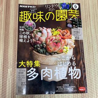NHK 趣味の園芸 2021年 9月号(専門誌)