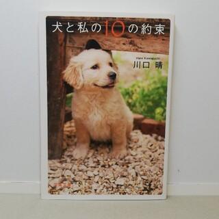 ブンゲイシュンジュウ(文藝春秋)の127. 犬と私の10の約束(文学/小説)