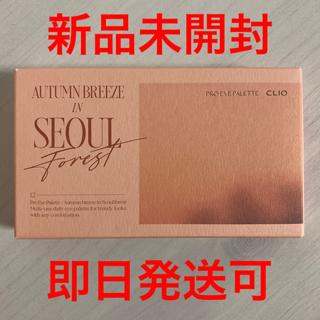 3ce - クリオ プロアイパレット 12 ソウルの森、秋の風 新色 新品未使用