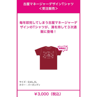 モモイロクローバーゼット(ももいろクローバーZ)のももいろクローバーz バレイベ2021 限定Tシャツ(アイドルグッズ)
