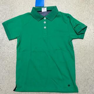 コロンビア(Columbia)の新品 レディース日本Mサイズ コロンビア フォンタナフォールズポロ グリーン(ポロシャツ)