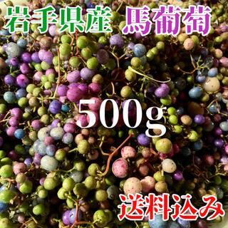 岩手県産 馬葡萄 500g 真空発送 馬どう ウマブドウ (野菜)
