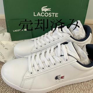 LACOSTE - ラコステ スニーカー