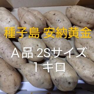 種子島安納黄金2S 1キロ(野菜)