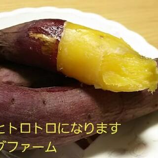 サツマイモR3年紅はるか家庭用Sサイズ茨城県7㌔土付き減農薬栽培安納芋以上甘さ(野菜)