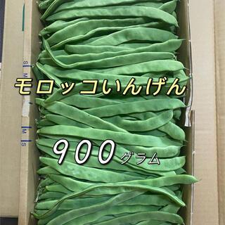 モロッコいんげん 900g(野菜)