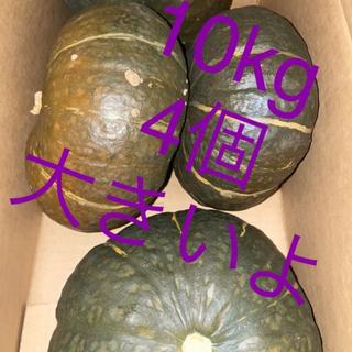 北海道 乙部産 品種 甘旨南瓜 カボチャ かぼちゃ 5個 約10kg(野菜)