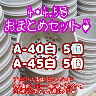 プラ鉢10個おまとめセット♪【4号・4.5号鉢 各5個】プレステラ多肉(プランター)