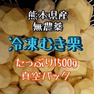 【即購入OK】熊本県産 冷凍むき栗 1500g☆無農薬(フルーツ)