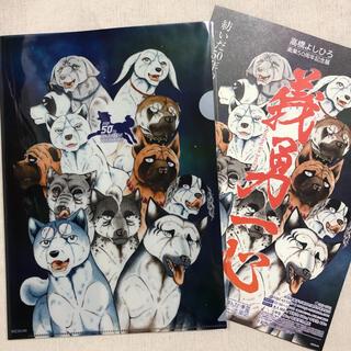 【新品】高橋よしひろ 画業50周年記念展 クリアファイル 銀牙伝説 WEED (クリアファイル)