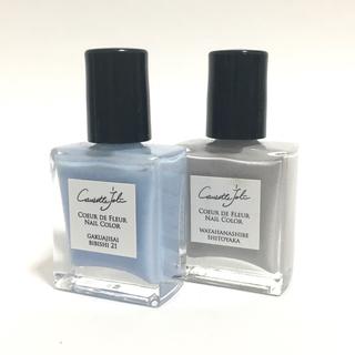 コゼットジョリ ネイルカラー 2本 2色セット① ブルー グレー 限定色