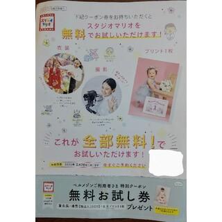 キタムラ(Kitamura)のスタジオマリオ無料お試し券(その他)