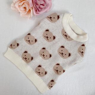 くまちゃん セーター ニット Sサイズ 犬服/猫服/ペット用品