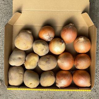 新じゃがいも(きたあかり)&新玉ねぎ お試し野菜1.2kg【北海道産】農家直送(野菜)