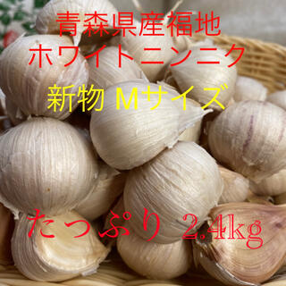新物 青森県産福地ホワイトニンニク Mサイズ2.4kg(野菜)