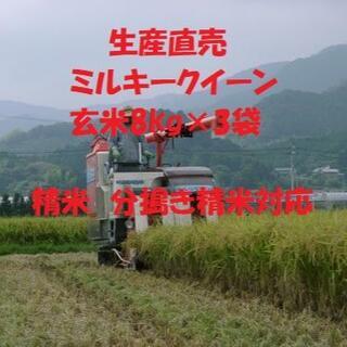 令和3年産新米ミルキークイーン玄米24kg 白米に精米または分搗き米対応