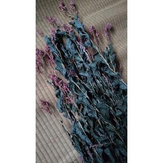 藍 乾燥藍 100g ドライフラワー スワッグ 薬草茶 乾燥藍(その他)