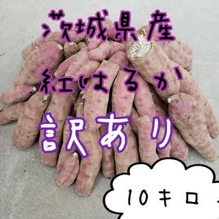 訳あり 紅はるか 10キロ 茨城県産 令和3年 さつま芋 サツマイモ お芋