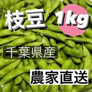 枝豆 1kg 千葉県産 農家直送(野菜)