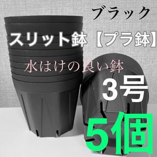 スリット鉢3号 直径9センチ 5個☆KANEYA(プランター)