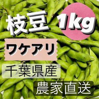 枝豆 ワケアリ 1kg 千葉県産 農家直送(野菜)