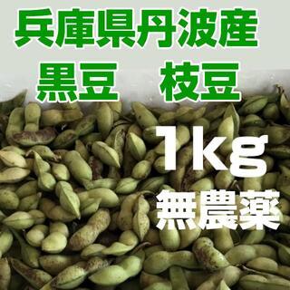 丹波市産 黒豆 枝豆  さやのみ 1kg 無農薬