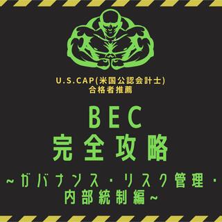 【BEC】USCPA試験対策⭐︎BEC完全攻略計4ページ【米国公認会計士】#1