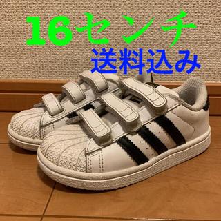 adidas - スーパースター アディダス