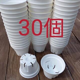 6cm スリット鉢 白 プラ鉢(プランター)