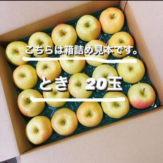 りんご とき トキ 林檎 20玉 青森県産 家庭用 傷少なめ