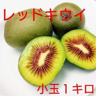 無農薬!キウイフルーツ【レッドキウイ】小玉1キロ(フルーツ)