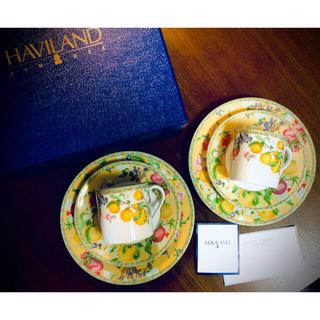 Haviland - HAVILAND  Jardin d' Eden カップ&ソーサー プレート