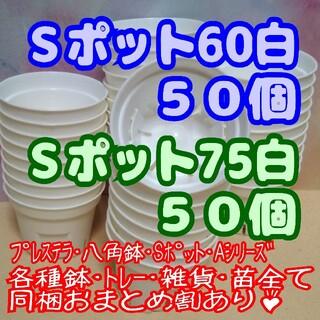 【スリット鉢】Sポット丸型60&75白 各50個 プレステラ 多肉植物 プラ鉢(プランター)