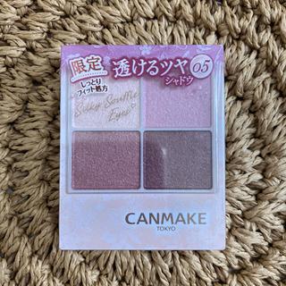 CANMAKE - キャンメイク シルキースフレアイズ 05 限定カラー