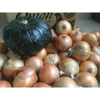 北海道産 カボチャとタマネギのセット 10kg 農家直送(野菜)