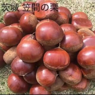 茨城 笠間産 栗 2L〜3L 1キロ