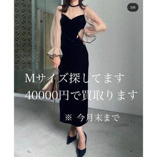 アメリヴィンテージ(Ameri VINTAGE)のAMERI MANY WAY TULLE VEIL DRESS (ロングドレス)