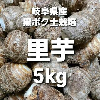 01 岐阜県産 無農薬 ねっとり 里芋 5kg 堀り立て発送!(野菜)