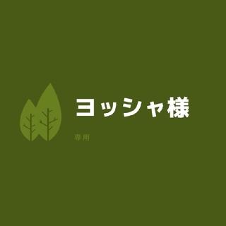 ヨッシャ様専用☆多肉植物(その他)