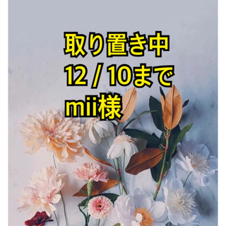 shiro - ホワイトリリー クレイハンドソープ