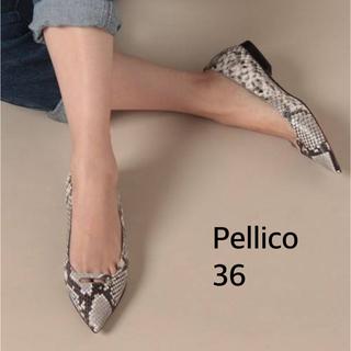 PELLICO - 【美品】ペリーコ パイソン フラットパンプス36