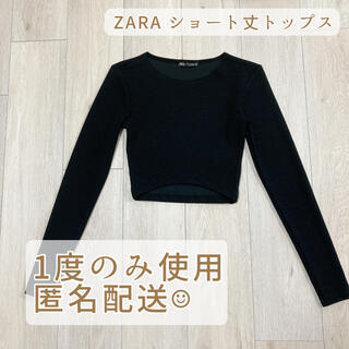ZARA - ZARA♡ショート丈トップス へそ出し カットソー
